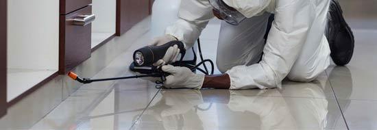 Hotel Pest Control Service