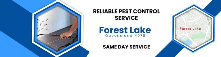 Pest Control Forest Lake