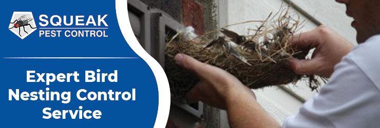 Bird Nesting Control Service