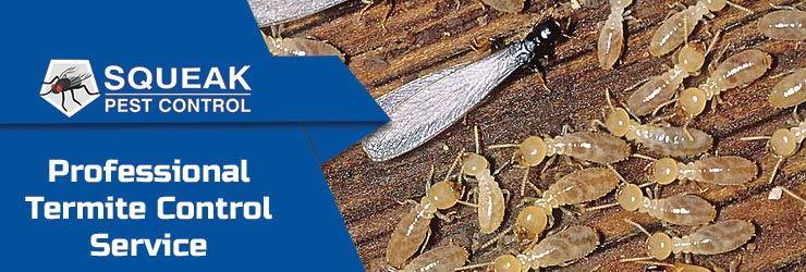 Termite Control Millendon