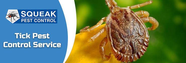 Tick Pest Control Service
