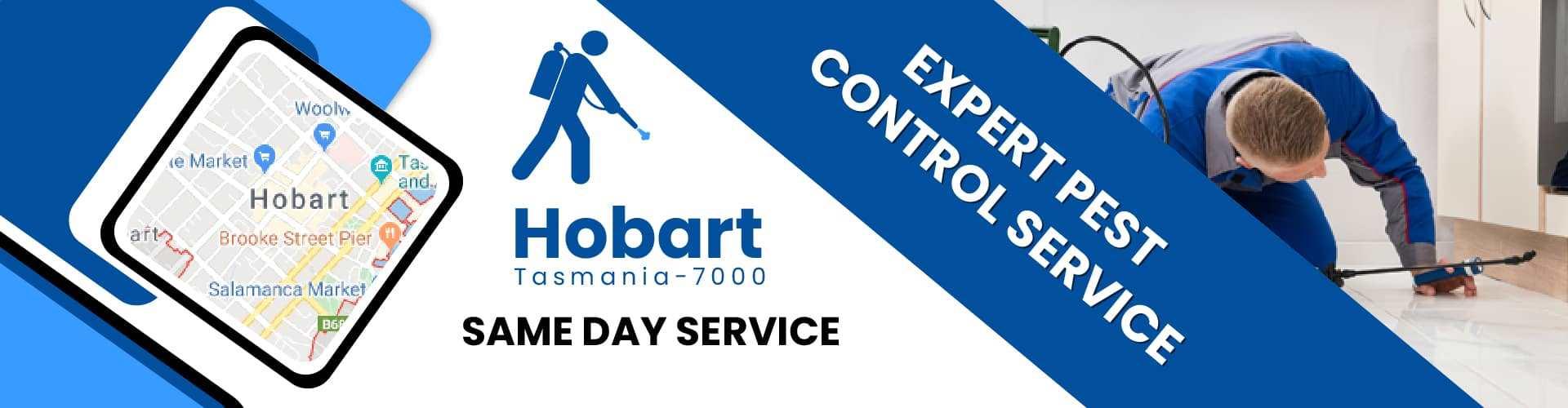 Pest Control Hobart