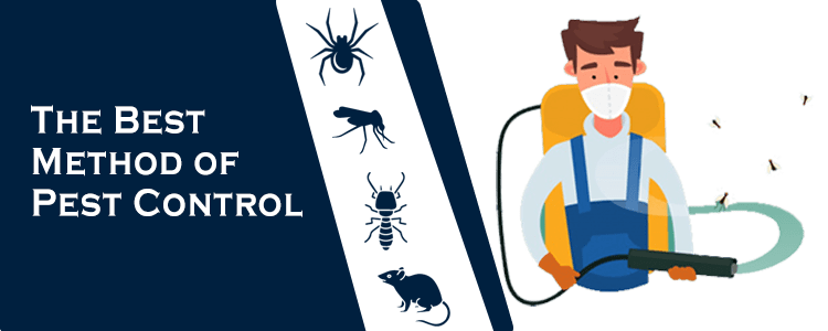 The Best Method of Pest Control Service